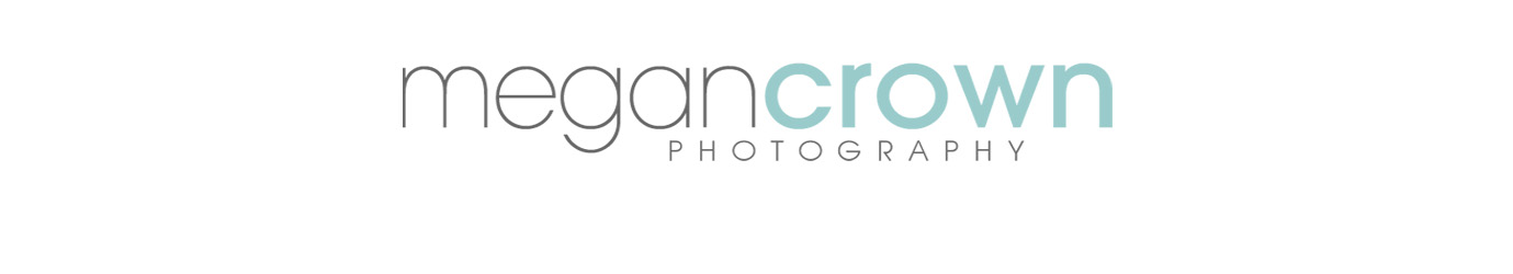 Twin Cities Birth, Newborn & Child Photographer