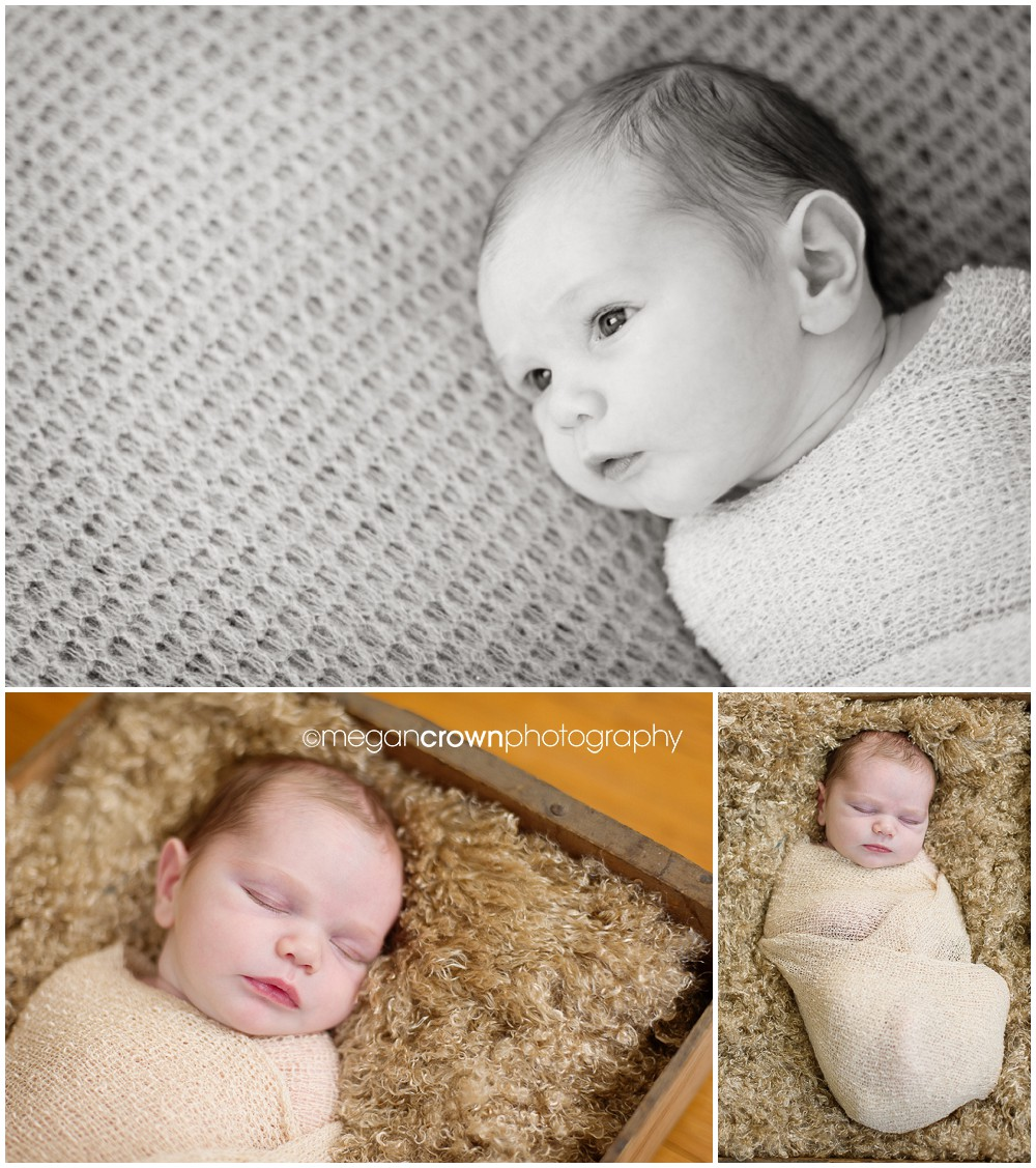 Saint St. Paul newborn baby photography by photographer Megan Crown