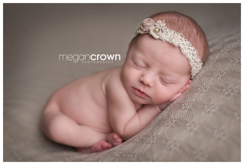 Newborn Photography St Paul Mn